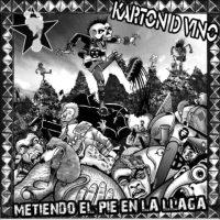 karton_metiendo