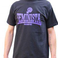 2feministasiempre